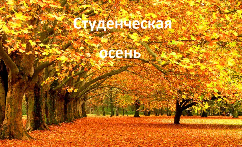 «Студенческая осень – 2020»